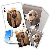 2-seitig personalisierte ovale Spielkarten, Tiere